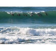 Surfin' Cetaceans Photographic Print