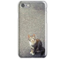 Cute little cat iPhone Case/Skin