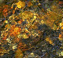 under water by J.K. York