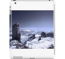 Frozen Landscape iPad Case/Skin