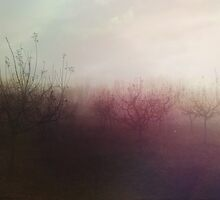 Fuse-Trees and mist by achluofobia