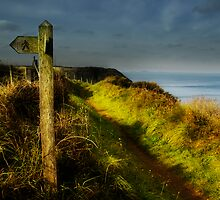 Pembrokeshire Coastal Path by Alan E Taylor