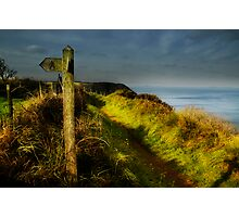Pembrokeshire Coastal Path Photographic Print
