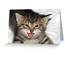 Screaming Kitty Greeting Card