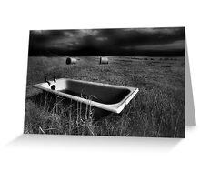 Bath and Bog Rolls Greeting Card