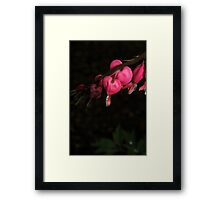 Tears... Framed Print