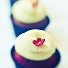 Cupcakes by BriGt