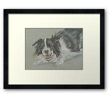 Collie dog pastel portrait Framed Print
