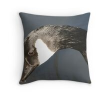 duck down on the pond Throw Pillow