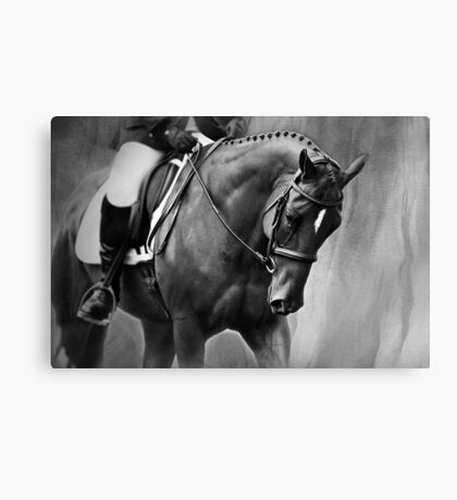 Elegance Dressage Horse in Black and White  Canvas Print