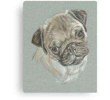 Pug dog pastel portrait Canvas Print