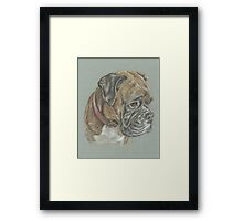 Dog pastel portrait Framed Print