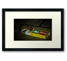 Average Contents One Mouse Framed Print