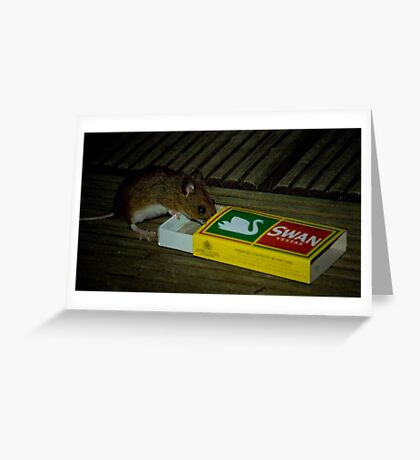 Average Contents One Mouse Greeting Card