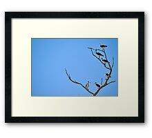 ayes to the left, nays to the right Framed Print