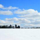 Winter in Wisconsin by Lynne Prestebak