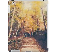 Stone Path Through a Forest in Autumn iPad Case/Skin