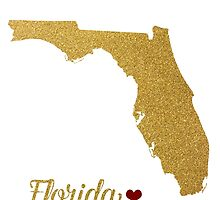 Florida gold glitter map by AnnaGo