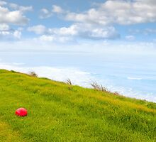 red stone on the Ballybunion links golf course by morrbyte