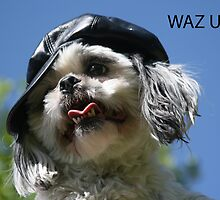 Waz UP!! by cindylu