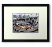photoj Tasmania Launceston Framed Print