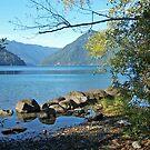 """Lake Crescent"" by Lynn Bawden"