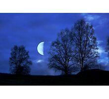 Moon between Trees - JUSTART © Photographic Print