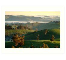 Rolling Hills, Dollar Gippsland Art Print