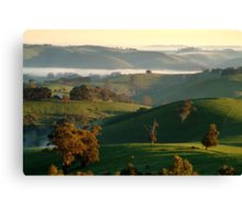 Rolling Hills, Dollar Gippsland Canvas Print