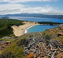 Crescent Bay - Tasman National Park, Tasmania by Eve creative photografix