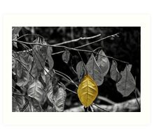 OneYellow Leaf Art Print
