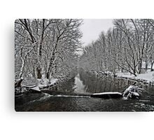 Saucon Creek Canvas Print