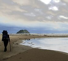 Lone Traveller George - South Coast Track, Tasmania by Eve creative photografix