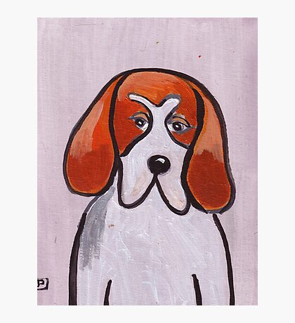 Freddy the foxhound Photographic Print