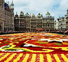 Brussels Flower Carpet 2006 by Alison Cornford-Matheson