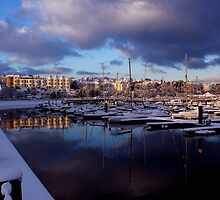 Fresh Snow In Bangor by Wrayzo