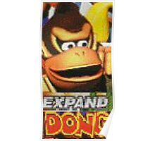 expand dong Poster