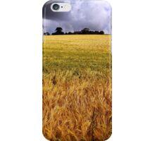 Drumlin Delight iPhone Case/Skin