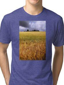 Drumlin Delight Tri-blend T-Shirt