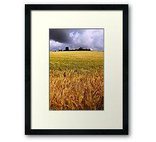 Drumlin Delight Framed Print