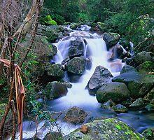 Eurobin Creek by Travis Easton