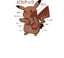 Pikachu Japanese anatomy graphic by razorcuts