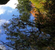 Autumn Upon Reflection Sticker