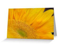 Natural Beauty Greeting Card