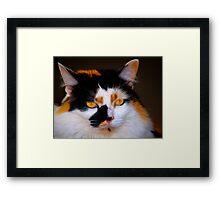 Her Majesty Framed Print