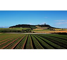 Scrabo In View Photographic Print