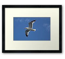 Nathan Livingston Framed Print