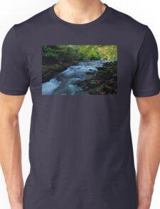 Autumn Falls Unisex T-Shirt