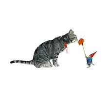 Gnome Offers a Flower to a Cat by matthewisles