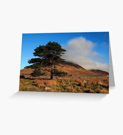A Lonely Place Greeting Card